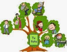 hermandadblanca_arbol-genealogico